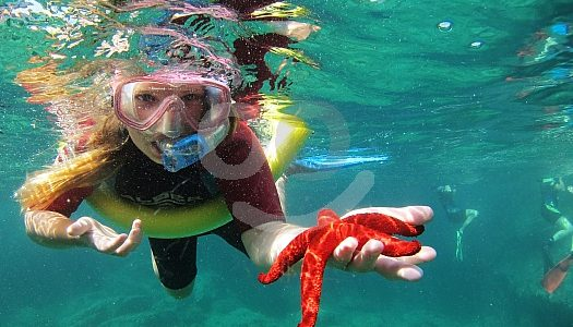 azores snorkelling